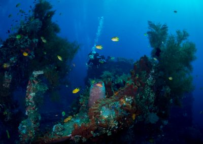 Diver on the USS Liberty Wreck